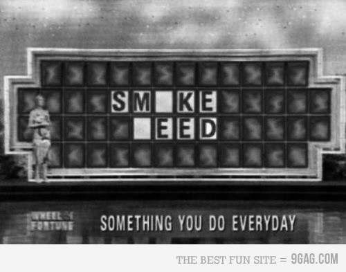 Smoke-weed-everyday (1).jpg