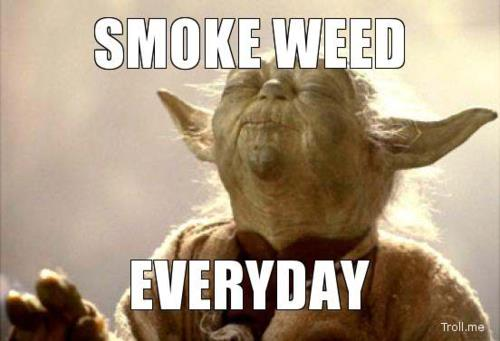 Smoke-Weed-Everyday.jpg